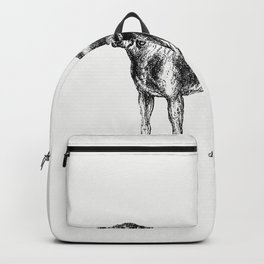 American Foxhound from The Life of a Foxhound (1848) Backpack