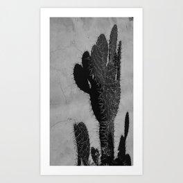 B&W Cactus Art Print