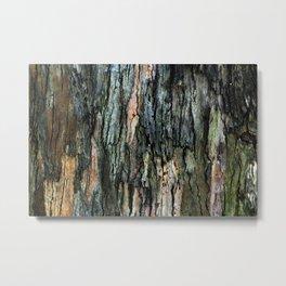 Old Eucalyptus Tree Bark Texture Metal Print
