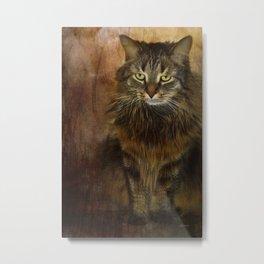 Cat 2 Metal Print