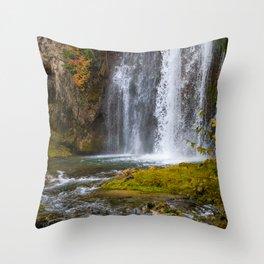 Spearfish Falls Throw Pillow