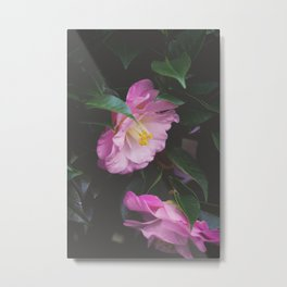 Moody Pink Camellia Metal Print