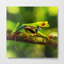 red-eyed tree frog | Watercolor Painting Metal Print