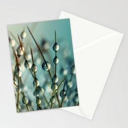 Cactus Craze II Stationery Cards