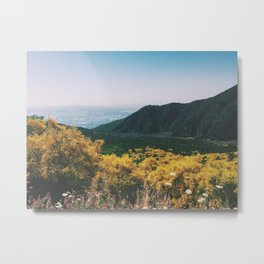 Volcano Wildflowers Metal Print