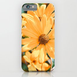 Floral 48 #daisies iPhone Case