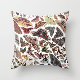 Moths of North America Throw Pillow
