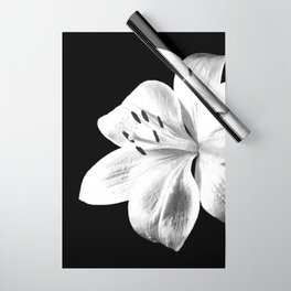 White Lily Black Background Wrapping Paper