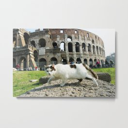 The Cat of the Colosseum Metal Print