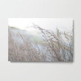 Dry Wind Metal Print