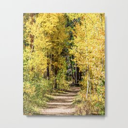 Yellow Tree Road // Hiking in the Forest Deep Into Autumn Colorful Trees Metal Print