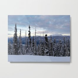 Snowy spruces frontier Metal Print