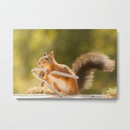 squirrel with a nutcracker Metal Print