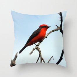 Mr. Vermillion Flycatcher Throw Pillow
