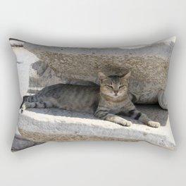 Guardian Of The Ruins Rectangular Pillow