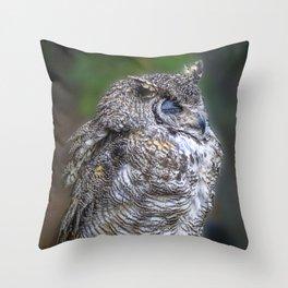 """""""Zzzzzzzz"""".......Said the Owl Throw Pillow"""