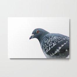 Peace Bird Metal Print