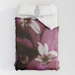 the Cyclamen Comforters
