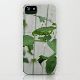 Spot the Curve-tailed Bush Katydid Grasshopper on Tomato Plant 2 iPhone Case