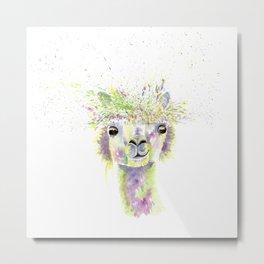 Alpaca Metal Print