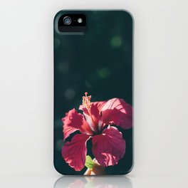 Hibiscus in Mexico iPhone Case