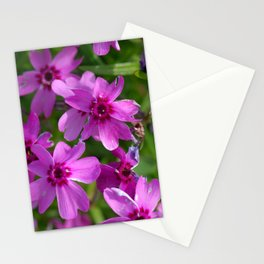 Flowers Izby Garden 6 Stationery Cards