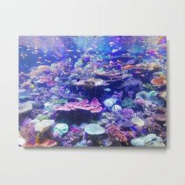 School Of Fish Metal Print