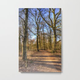 Spring Forest Path Metal Print