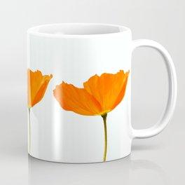 Three Orange Poppy Flowers White Background  Coffee Mug