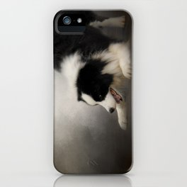 Ready to Play - Border Collie iPhone Case