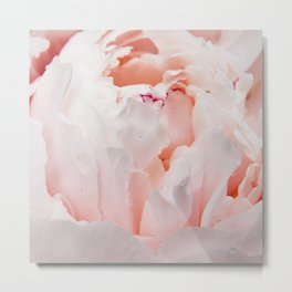 Pink Peony | Flower Photography | Floral Art Print | Nature | Botany | Plant Metal Print