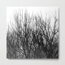 Black white modern abstract tree branch pattern Metal Print