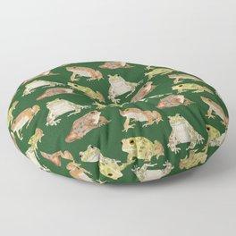 Toads Floor Pillow