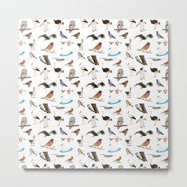 Various Birds Metal Print