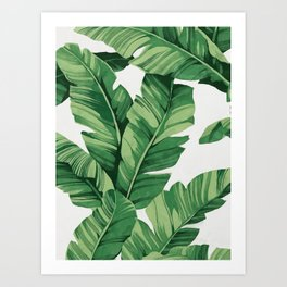 Tropical banana leaves Kunstdrucke