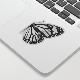 Monarch Butterfly | Right Butterfly Wing | Vintage Butterflies | Black and White | Sticker