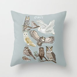 Owls Illustrated Chart Throw Pillow