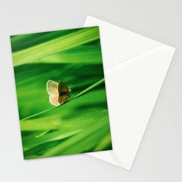 Lonely Butterfly Stationery Cards