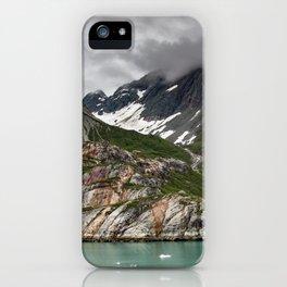 Barren Wilderness iPhone Case