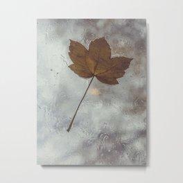 Autumn Rainy Leaf Metal Print