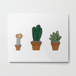 Succulent set Metal Print