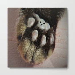 The Teddy Cat Metal Print