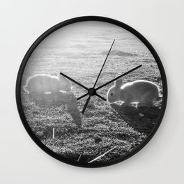 Bunny // Black and White Cute Nursery Photograph Adorable Baby Bunnies in the Field Wall Clock