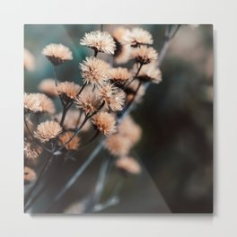 Seeds Of Change #1 Metal Print