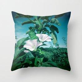 Thunbergia Grandiflora Throw Pillow