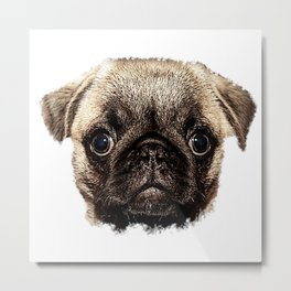 Pug canvas, dog fan, dog lover, dog Metal Print