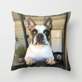 French Bull  Dog  Puppies Throw Pillow