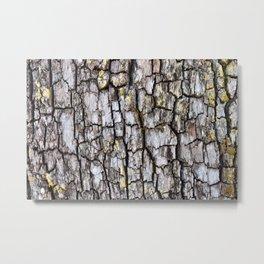 Tree Bark Texture 2 Metal Print