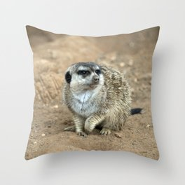 Meercat watching  Throw Pillow
