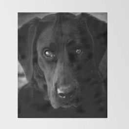 Loyalty  Black Lab  Throw Blanket
